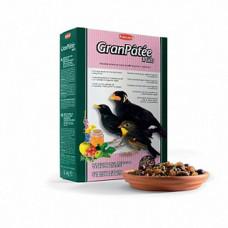 Padovan (Падован) GranPatee Fruits. Корм для насекомоядных и плотоядных птиц с фруктами 1кг