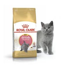 Royal Canin (Роял Канин) British Shorthair Kitten корм для котят породы Британская короткошерстная 0.4кг;2кг;10кг