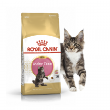 Royal Canin (Роял Канин) Maine Сoon Kitten. Корм для котят породы Мэй Кун 0.4кг;2кг;4кг