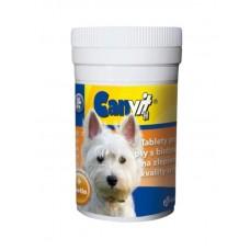 Canvit (Канвит) Biotin H. Витаминный препарат для собак с витамином Н 100табл;230табл
