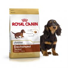 Royal Canin (Роял Канин) Dachshund Junior корм для щенков породы Такса 1.5кг