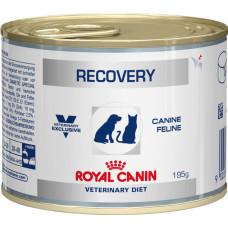 Royal Canin (Роял Канин) Recovery Dog/Cat диета для собак и кошек в востановительный период после болезни 195г