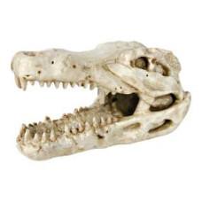 Trixie (Трикси) Грот Череп крокодила