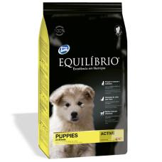 Equilibrio (Эквилибрио) Dog Puppies Medium Breeds сухой суперпремиум корм с курицей для щенков средних пород 0,07кг; 2кг; 15кг
