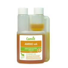 Canvit (Канвит) Amino sol. Комплекс гидрофильных витаминов группы В, аминокислот, глюкозы и солей